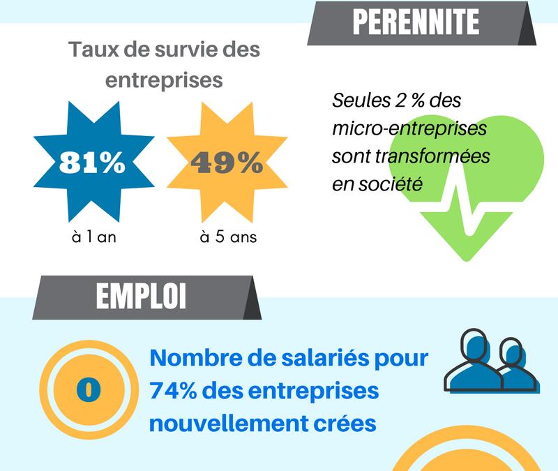 Panorama de l'entrepreneuriat en France